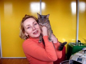Spice Devon rex Cat transport from NZ to Amsterdam Netherlands