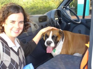 Tabu dog transport from NZ to Perth Australia