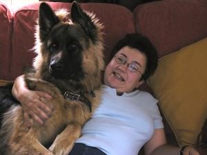 Ted German Shepherd dog transport from NZ to UK