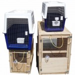 pet transport cages for rent