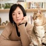 pet transport cat to japan