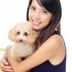 pet transport dog to hong kong