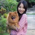 pet transport dog to singapore