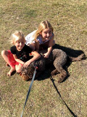 Pet Transport To Australia Reviews